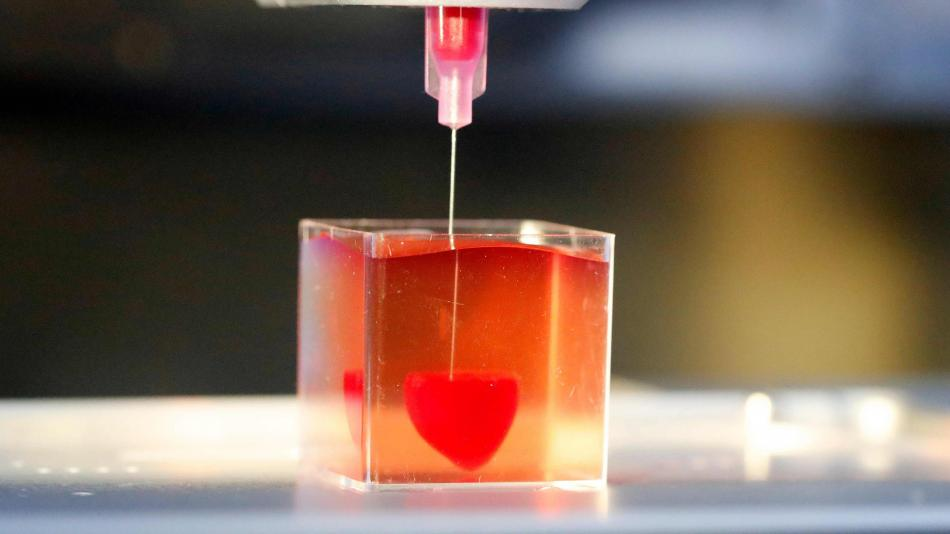 Israel imprime el primer corazón en 3D Corazon